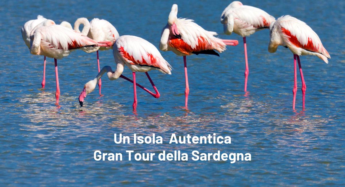 Gran Tour della Sardegna Business Website-3